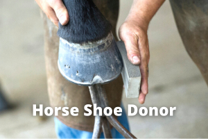 Horse Shoe Donor